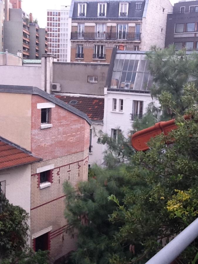 Rooftop Volubilis